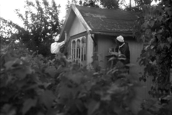 Rodeløkka kolonihage, juni 1947