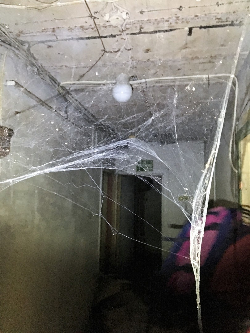 Ruseløkka bunker med spindelvev